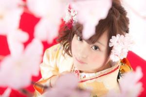着物美人と桜