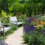 花畑とベンチ