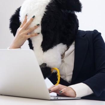 パソコンの前でうなだれる牛