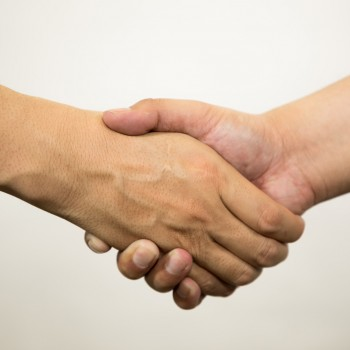 握手がっちり