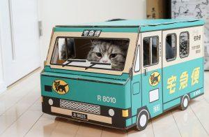 猫が届ける宅配便